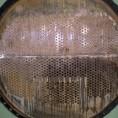 Intercambiador de calor dañado por corrosión